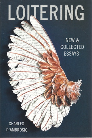 Loitering: New and Collected Essays, D'Ambrosio, Charles