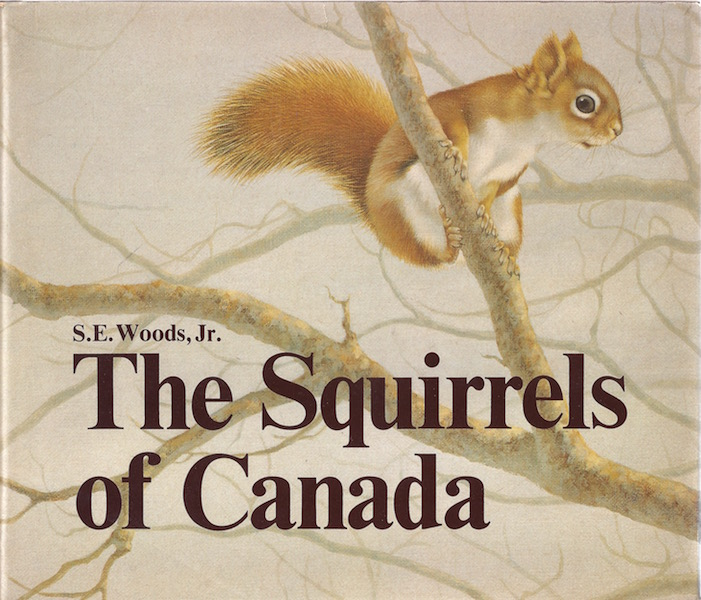 The Squirrels of Canada, Woods, Shirley